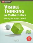 visible-thinking-in-mathematics-3b